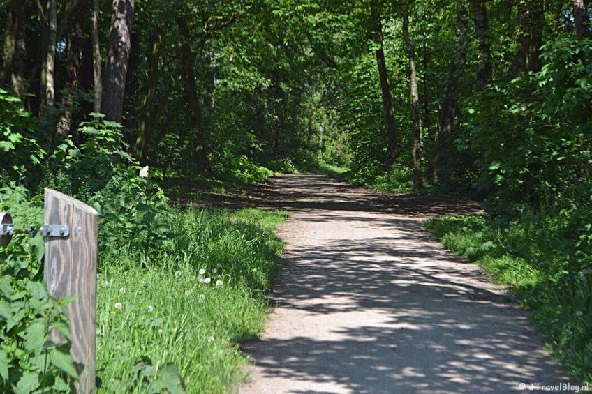 Het bospad tussen de Bussumerheide en Hilversum tijdens de 5e etappe van het Westerborkpad
