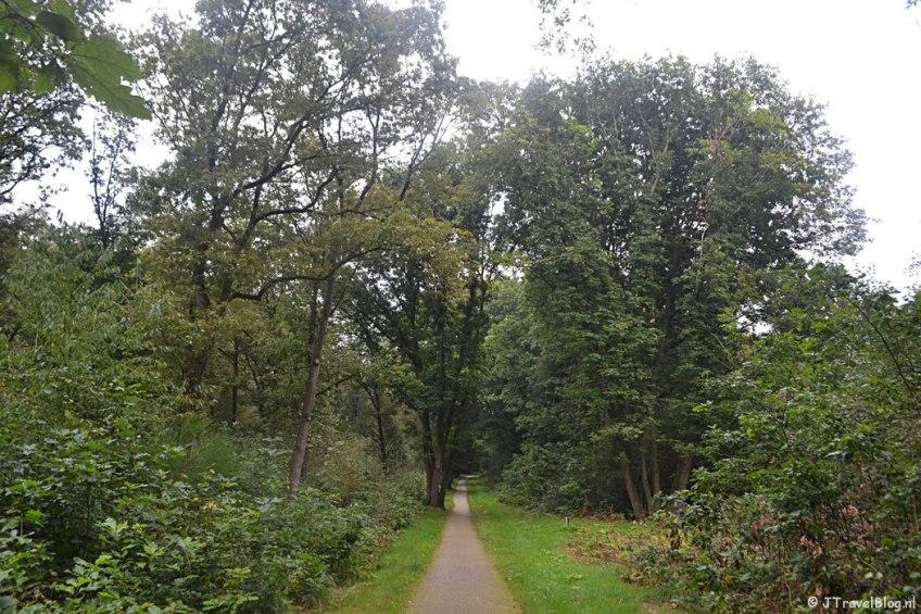 Een bospad in Amersfoort tijdens de 9e etappe van het Westerborkpad