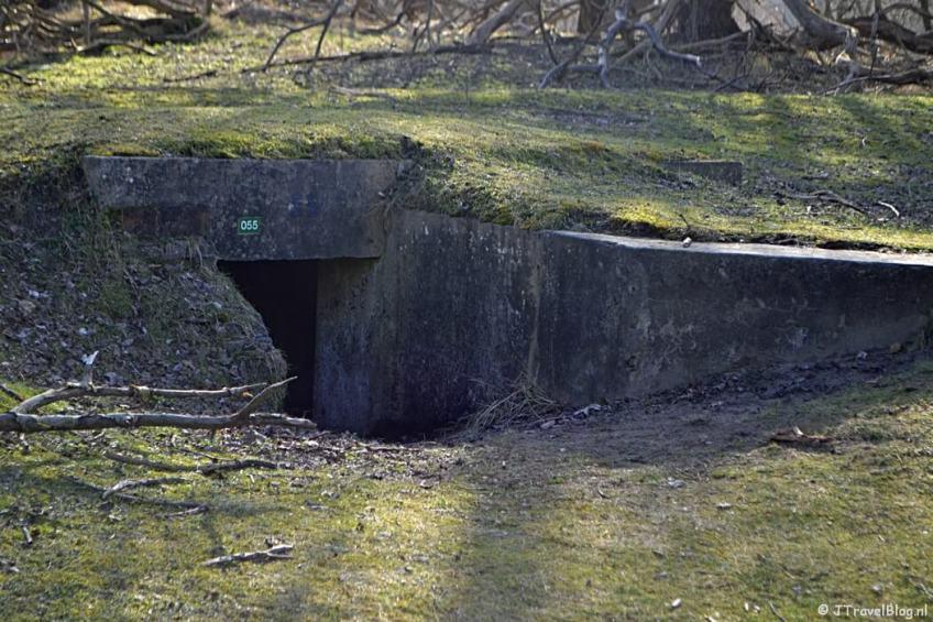 Bunker nr. 55 tijdens de bunkerroute in de Amsterdamse Waterleidingduinen