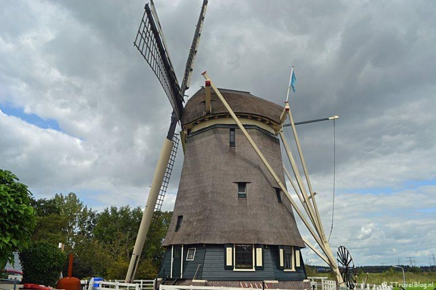 De Gaaspermolen tijdens de 2e etappe van het Westerborkpad