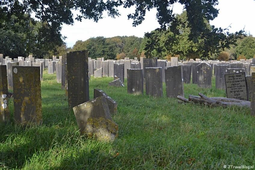 De Joodse begraafplaats in Muiderberg tijdens de 3e etappe van het Westerborkpad