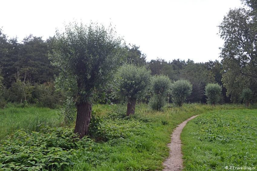 Een bos aan de Muiderstraatweg in Diemen tijdens de 2e etappe van het Westerborkpad