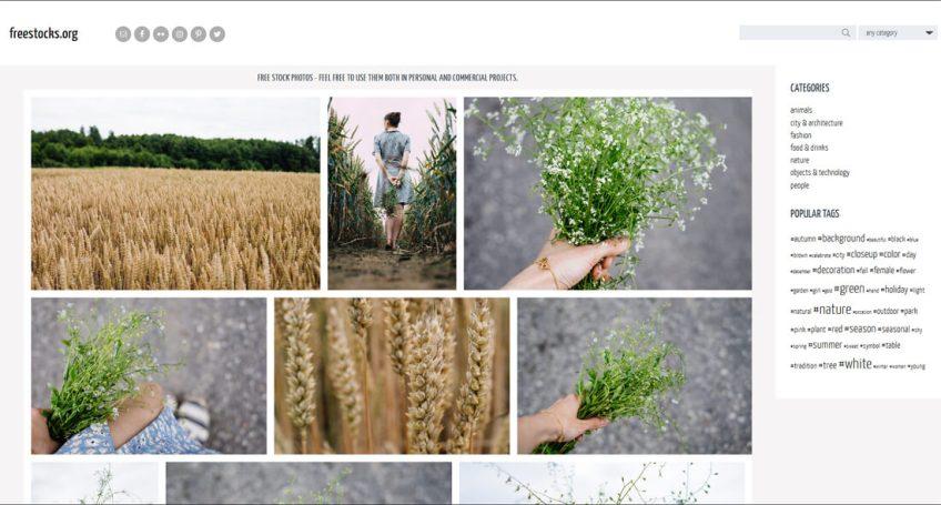 Freestocks: een website met gratis afbeeldingen
