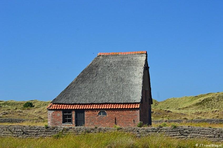 Schapenboet in natuurgebied De Muy op Texel