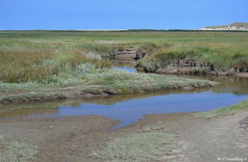 Natuurgebied De Slufter op Texel