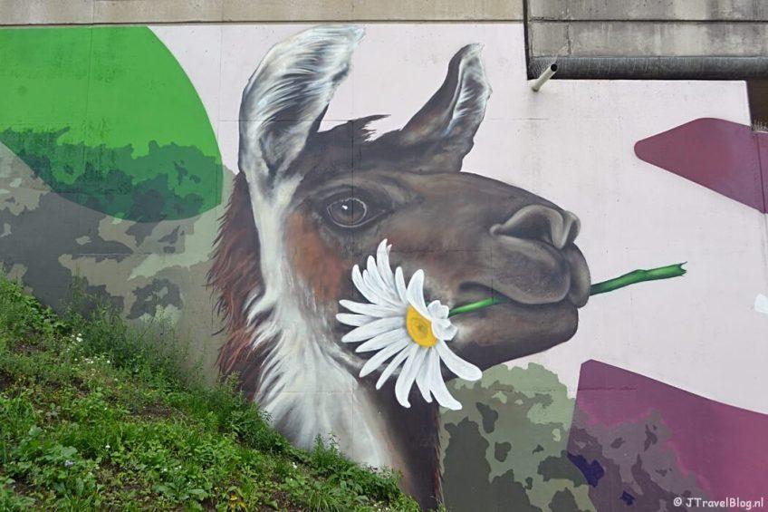 Streetart op het spoorviaduct aan de Muiderstraatweg in Diemen tijdens de 2e etappe van het Westerborkpad