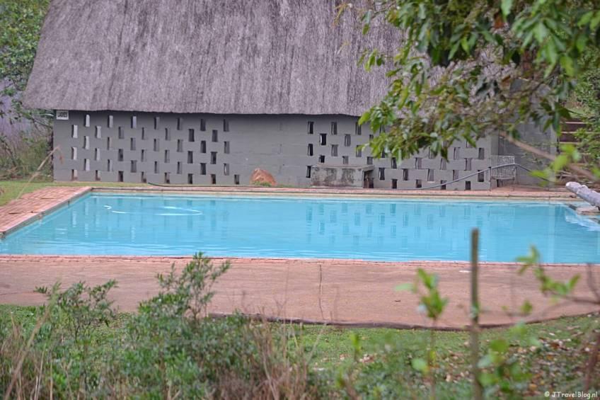 Het zwembad van Mlilwane Wildlife Sanctuary in Swaziland