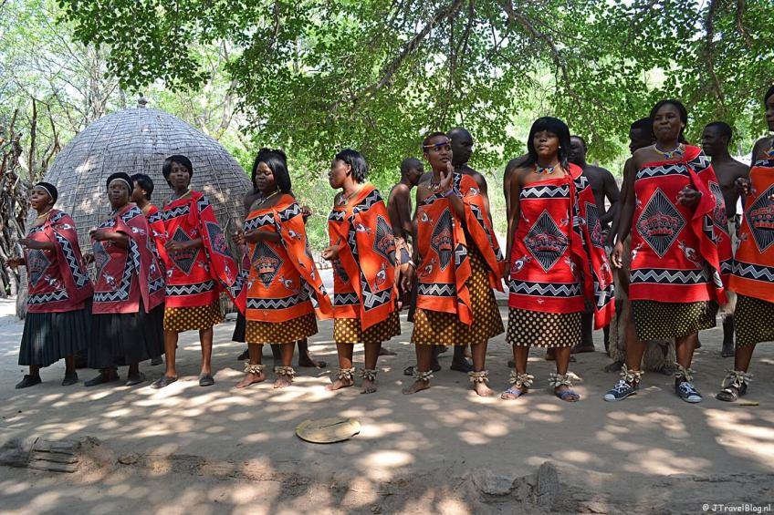 Zuludansers in het Zuludorp in Swaziland