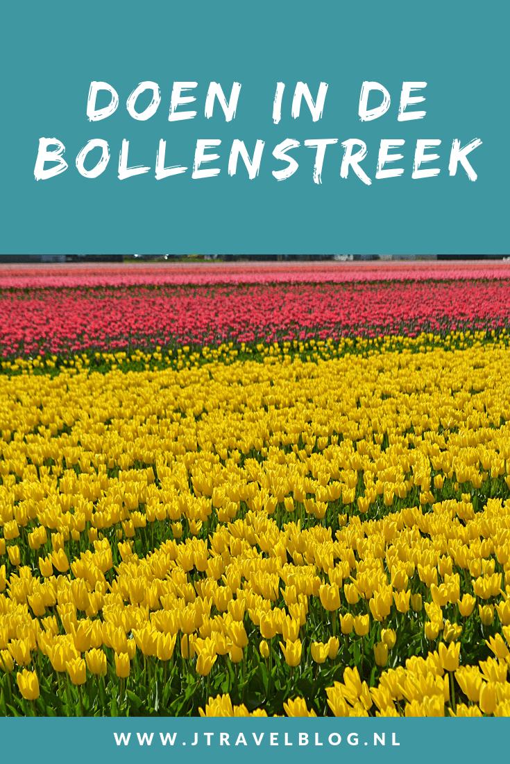 Er is het hele jaar door genoeg te doen in de Bollenstreek. De streek biedt meer dan alleen de bollenvelden in het voorjaar. Ik heb alles voor je op een rijtje gezet. Lees je mee? #lisse #bollenstreek #wandelen #fietsen #museum #keukenhof #kasteelkeukenhof #jtravel #jtravelblog