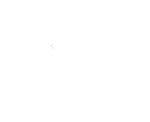 Jtree SEO White Logo
