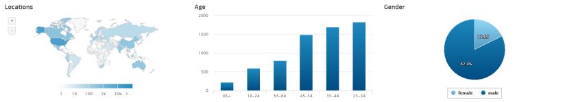 Website Visitor Demographic Graphs