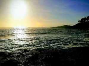 Oregon Coast SEO