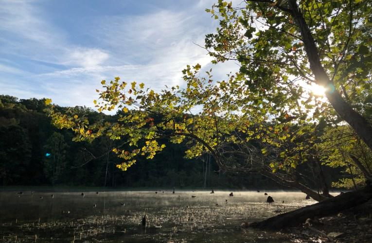 Indian-Celina Lake Recreation Area Indiana 2019