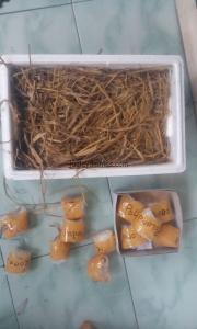 Model Pengiriman Telur Ayam Hias dengan Jumlah Lebih dari 20 butir menngunakan Wadah Sterofoam (2)