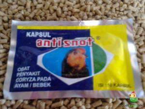 Kapsul Anti Snot