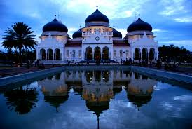 Bibit ayam kampung super bisa di kirim ke Aceh via pesawat