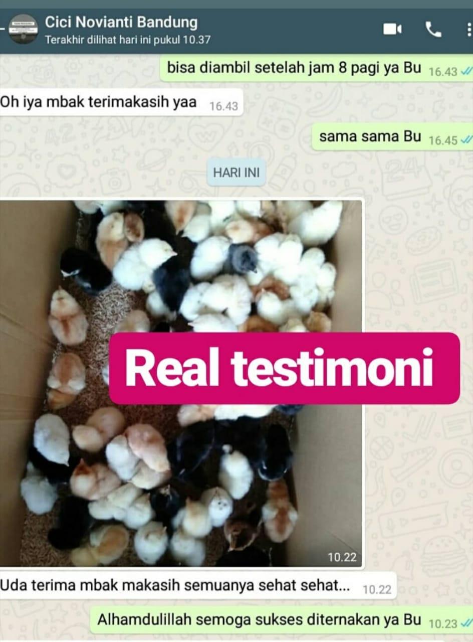 Testimoni Ibu Cici Bandung