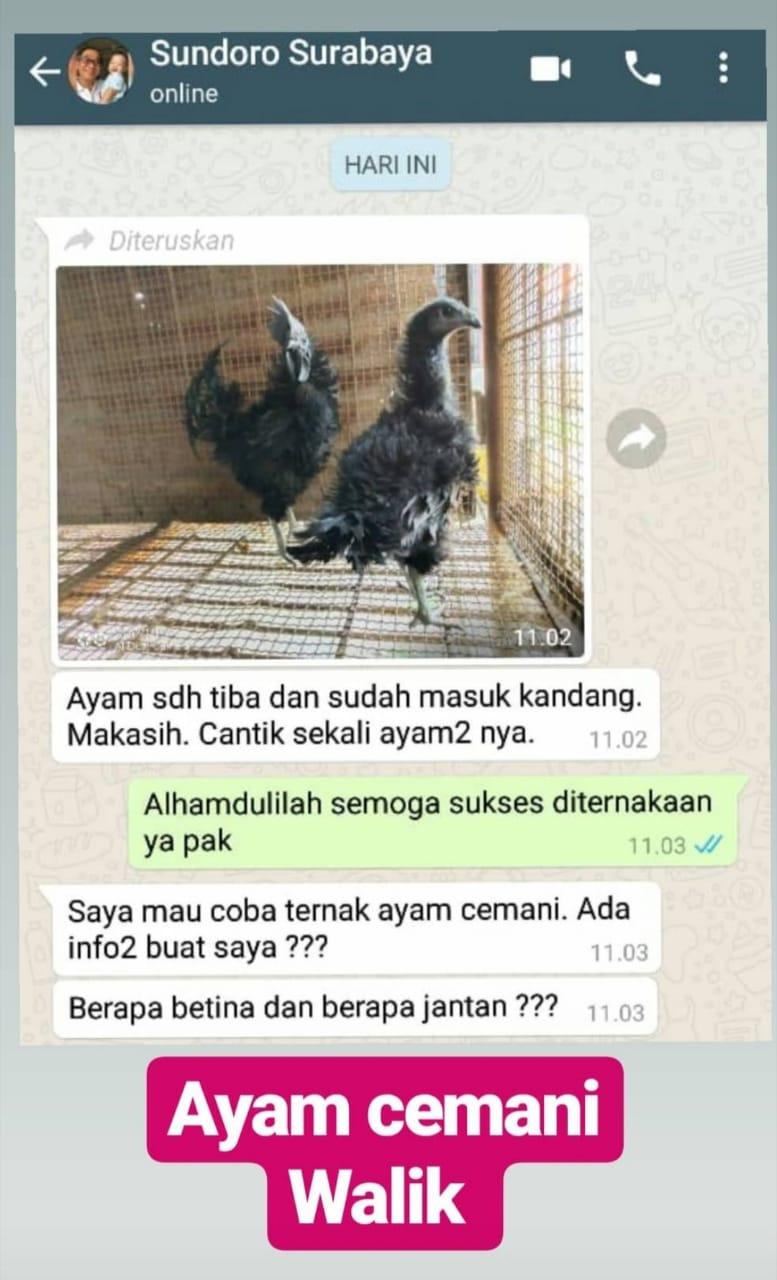 Testimoni Pak Sundoro Surabaya