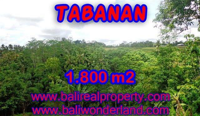 DIJUAL TANAH DI TABANAN RP 280.000 / M2 - TJTB088 - INVESTASI PROPERTY DI BALI