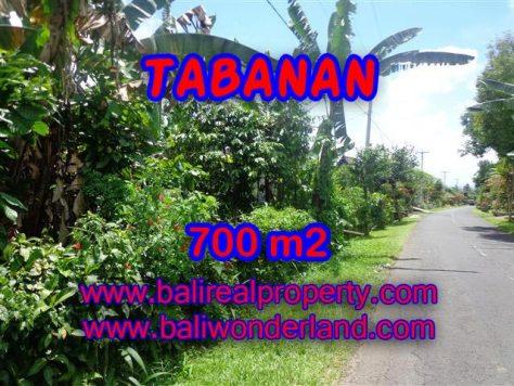 TANAH DI BALI, MURAH DIJUAL DI TABANAN TJTB090