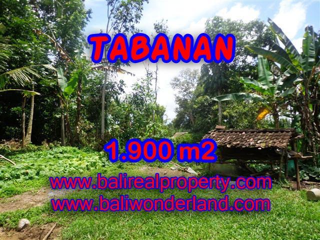 DIJUAL TANAH DI BALI, MURAH DI TABANAN RP 350.000 / M2 - TJTB091