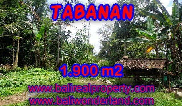 DIJUAL TANAH DI BALI, MURAH DI TABANAN RP 350.000 / M2 – TJTB091