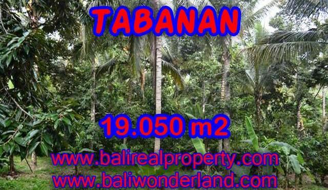 MURAH ! DIJUAL TANAH DI TABANAN TJTB092 - PELUANG INVESTASI PROPERTY DI BALI