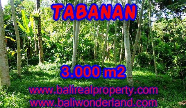 TANAH DIJUAL DI BALI, MURAH DI TABANAN RP 220.000 / M2 - TJTB109