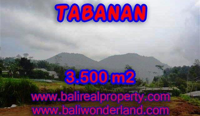 TANAH DI TABANAN MURAH DIJUAL TJTB102 - INVESTASI PROPERTY DI BALI