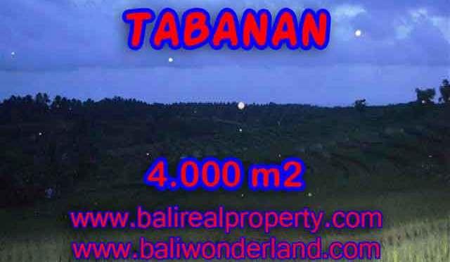 TANAH DI TABANAN BALI DIJUAL CUMA RP 360.000 / M2