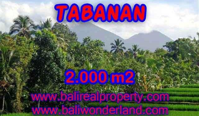 MURAH ! TANAH DIJUAL DI TABANAN BALI TJTB121 – INVESTASI PROPERTY DI BALI