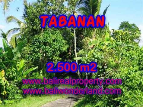 DIJUAL TANAH DI TABANAN BALI MURAH TJTB122