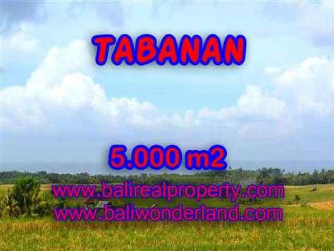 INVESTASI PROPERTI DI BALI - JUAL TANAH DI TABANAN CUMA RP 850.000 / M2