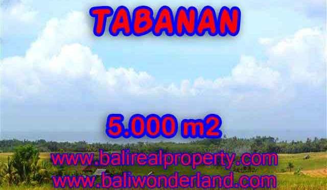 INVESTASI PROPERTI DI BALI – JUAL TANAH DI TABANAN CUMA RP 850.000 / M2