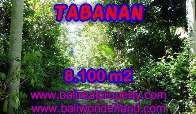 Murah ! Tanah di TABANAN Bali Dijual TJTB113 - investasi property di Bali
