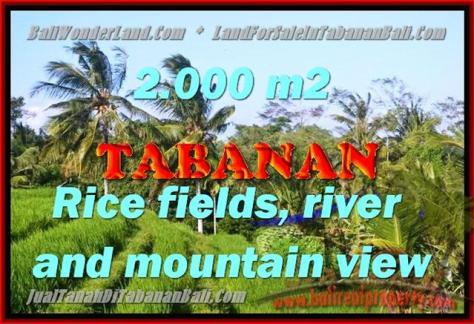 DIJUAL TANAH DI TABANAN BALI TJTB147 - PELUANG INVESTASI PROPERTY DI BALI