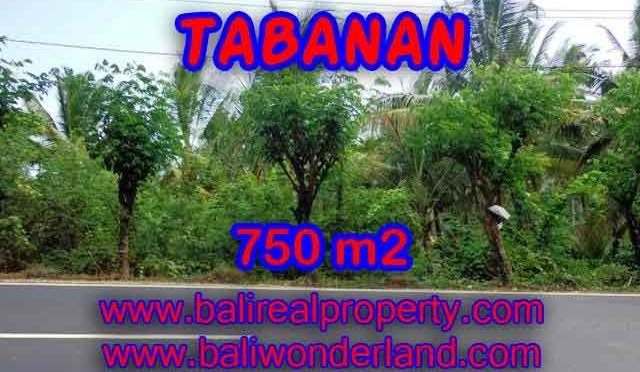 DIJUAL TANAH MURAH DI TABANAN BALI TJTB138 - KESEMPATAN INVESTASI PROPERTY DI BALI
