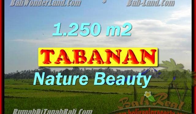 DIJUAL TANAH DI TABANAN RP 3.350.000 / M2 – TJTB148 – INVESTASI PROPERTY DI BALI