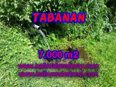 TANAH MURAH DI TABANAN TJTB089