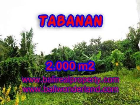 TANAH DI TABANAN DIJUAL TJTB099 - INVESTASI PROPERTY DI BALI