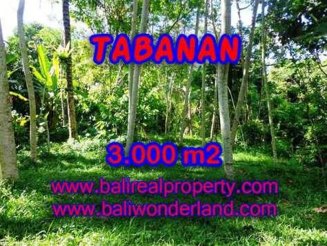 PELUANG INVESTASI PROPERTI DI BALI - TANAH DI TABANAN DIJUAL TJTB109