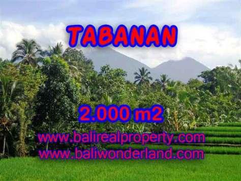 DI JUAL TANAH DI TABANAN BALI TJTB121 - PELUANG INVESTASI PROPERTY DI BALI