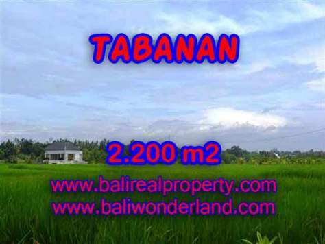 INVESTASI PROPERTI DI BALI - JUAL TANAH DI TABANAN BALI TJTB097