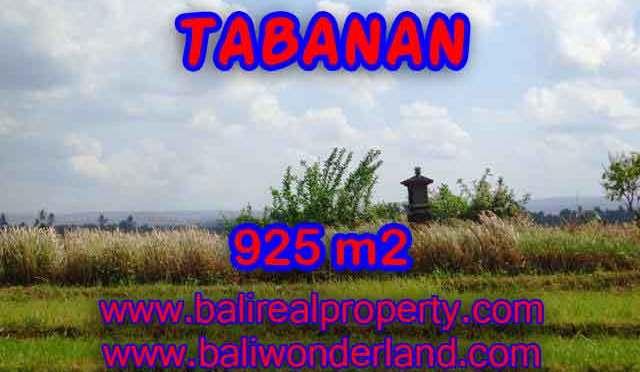 DIJUAL TANAH DI TABANAN MURAH TJTB135 - INVESTASI PROPERTY DI BALI