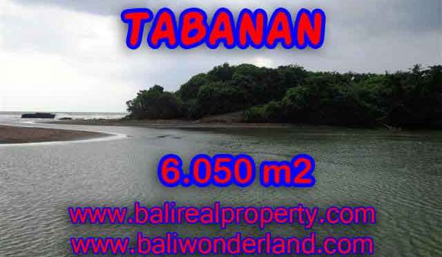 INVESTASI PROPERTI DI BALI – TANAH DIJUAL DI TABANAN BALI TJTB098