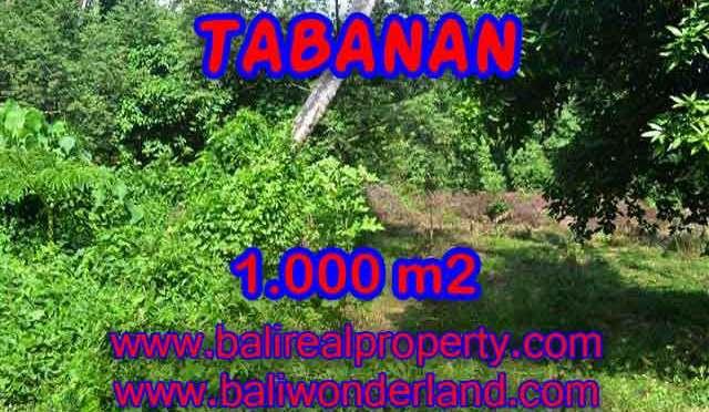 INVESTASI PROPERTI DI BALI – MURAH ! TANAH DIJUAL DI TABANAN TJTB114