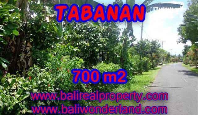 INVESTASI PROPERTI DI BALI – DIJUAL TANAH MURAH DI TABANAN TJTB090