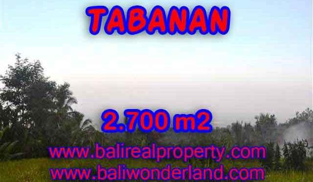 INVESTASI PROPERTI DI BALI - TANAH DIJUAL DI TABANAN BALI TJTB128