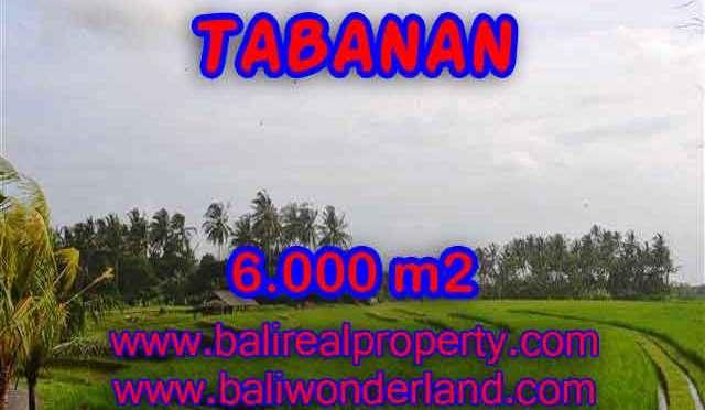 TANAH DI BALI, MURAH DI TABANAN DIJUAL TJTB093 - INVESTASI PROPERTY DI BALI