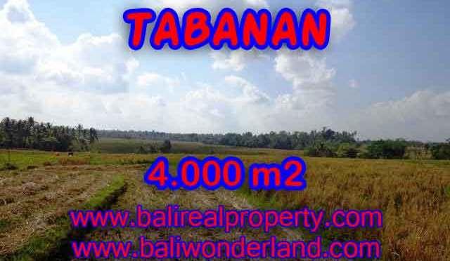 MURAH ! TANAH DI TABANAN BALI TJTB132 - INVESTASI PROPERTY DI BALI